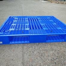 广西塑料托盘塑料垫板防潮板仓储运输塑胶板田字卡板图片
