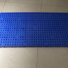 广西南宁塑料托盘垫板仓储运输板防潮板塑料地台板图片
