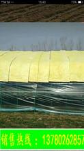 河北16kg-100mm超細玻璃纖維棉廠家價格優惠圖片