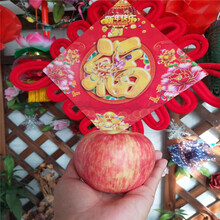m26矮化蘋果苗批發價格瑞陽蘋果苗苗場電話圖片