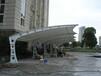 宁德新款汽车棚、福安小区电瓶车遮雨棚、福鼎膜结构停车棚