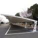泉州室外停车棚、石狮膜结构汽车棚、晋江电动车棚
