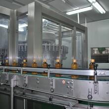 廣州食品飲料生產線供貨商圖片