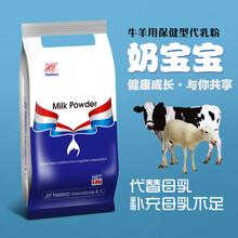 反芻牛羊用代乳粉奶粉補充母乳不足解決牛羊母乳不足圖片