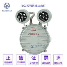 BAJ52-DC36V2×3W雙頭防爆消防應急燈