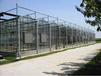 蘇州玻璃溫室大棚建造成本