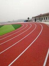 十堰学校塑胶跑道施工公司图片