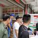 上海周邊蛋雞苗批發價