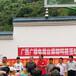金華鵝苗價格行情-重慶巫溪縣里賣雞苗