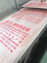 桂林阻燃板報價圖片