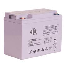 雙登蓄電池12v65ah6-GFM-65太陽能蓄蓄電池UPS蓄電池EPS