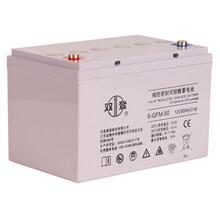 雙登12V100AH6-GFM-100電廠UPSEPS備用電源儲能阻燃防爆高功率蓄電池