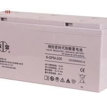 江蘇雙登12V200AH6-GFM-200AH大容量長壽命內阻低阻燃防爆蓄電池