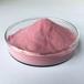 現貨批發食品級水溶散裝蔓越莓粉固體飲料制片20:1蔓越莓果汁粉