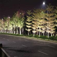 邯郸LED抱树灯供货商图片