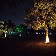 济南LED抱树灯厂家批发图片