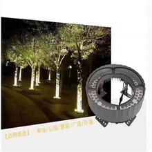南通LED抱树灯厂家报价图片
