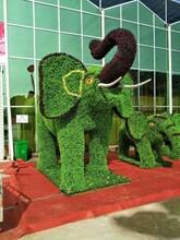 臨滄綠雕制作價格圖片