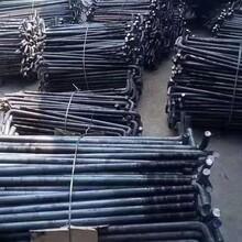 预埋地脚螺栓-钢结构地脚螺栓-地脚螺栓厂家