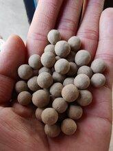滁州黏土球加工廠家