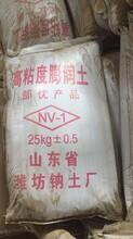 蘇州鈉基膨潤土生產圖片