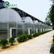 靠谱的薄膜温室大棚建设厂家连栋薄膜温室大棚骨架材料