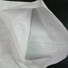 江蘇白色水泥袋價格