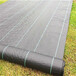 黑色防草布大量供應