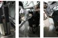 熔噴布檢測儀生產