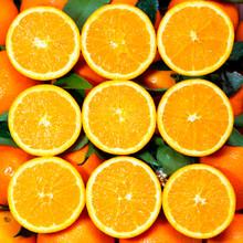深圳臍橙訂購圖片