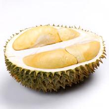 天津泰國榴蓮產地直銷圖片