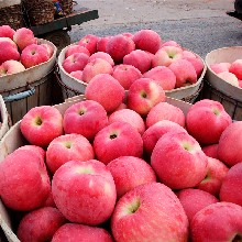 西安蘋果批發圖片