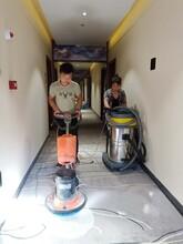 順德區地毯清洗