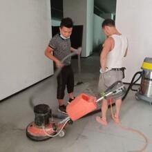 順德區地毯地面清洗