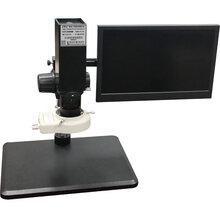 泰州視頻顯微鏡廠家圖片