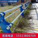 晉中人行道欄桿橋梁景觀護欄價錢