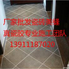 供应美缝剂施工价格13q11l87o20