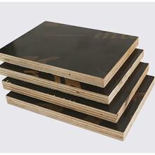 广西贵港建筑模板覆膜板生产厂家-贵港市唐氏木业有限公司图片