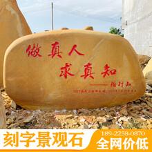 汕頭刻字石廠家廣東海邊黃蠟石造景峰景園林承接造景工程圖片