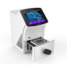 Q1000型熒光定量PCR儀圖片