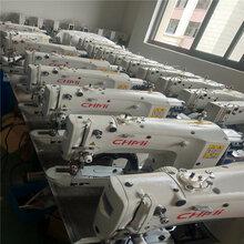 1850型縫紉機生產廠家圖片