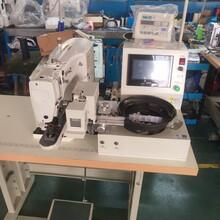 深圳430D型縫紉機價格圖片