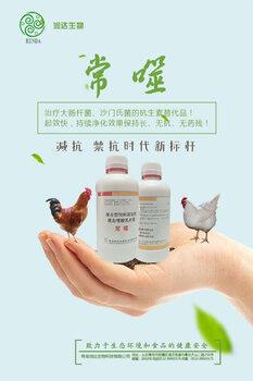 鸡群后期感染大肠杆菌怎么治疗?润达常噬,效果好,见效快!