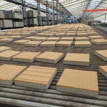 溫州陶瓷透水磚廠家批發圖片