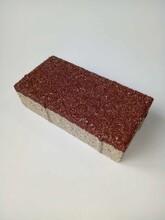 成都陶瓷透水磚廠家批發圖片