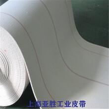 浙江无缝环形帆布输送带无接头帆布带全棉耐高温帆布输送带厂家图片