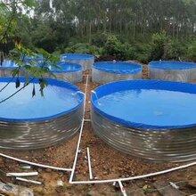 储水帆布水池直销环保鱼池制作厂家湛江养殖牛蛙必备水池鱼池图片