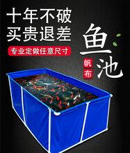 惠州市拓翔pvc帆布水池镀锌板鱼苗养殖水池耐磨耐拉帆布水池图片