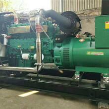 滁州玉柴發電機出租圖片