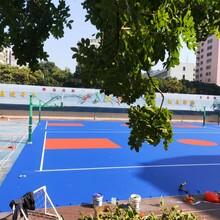 湛江供應籃球場圖片